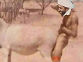 Saddam loved to fuck sheep